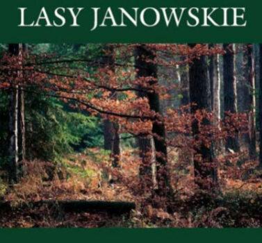 lasy janowskie - w tle las z czerwonymi liśćmi