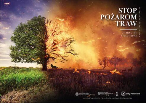 """płonąca łąka z drzewe, razem z napisem """"stop pożarom traw"""""""