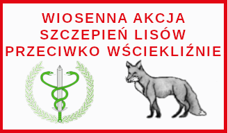 wiosenna kacja szczepień lisów przeciwko wściekliźnie