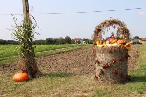 Zdjęcie przedstawia zrobiony z siana koszyk wypełniony warzywami na tle pola