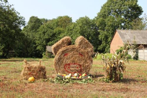 Zdjęcie przedstawia zestawioną z siana figurę stojącą na pole