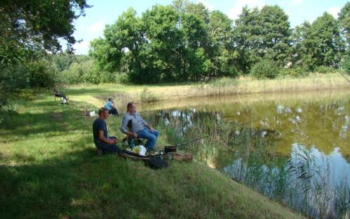 Obrazek przedstawia ludzi łowiących ryby nad stawem.
