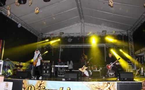 Zdjęcie przedstawia wystąpienie grupy muzycznej